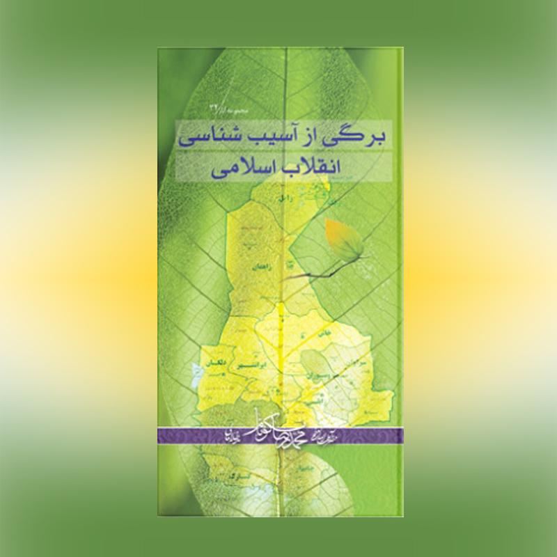 Image result for برگی از آسیب شناسی انقلاب اسلامی