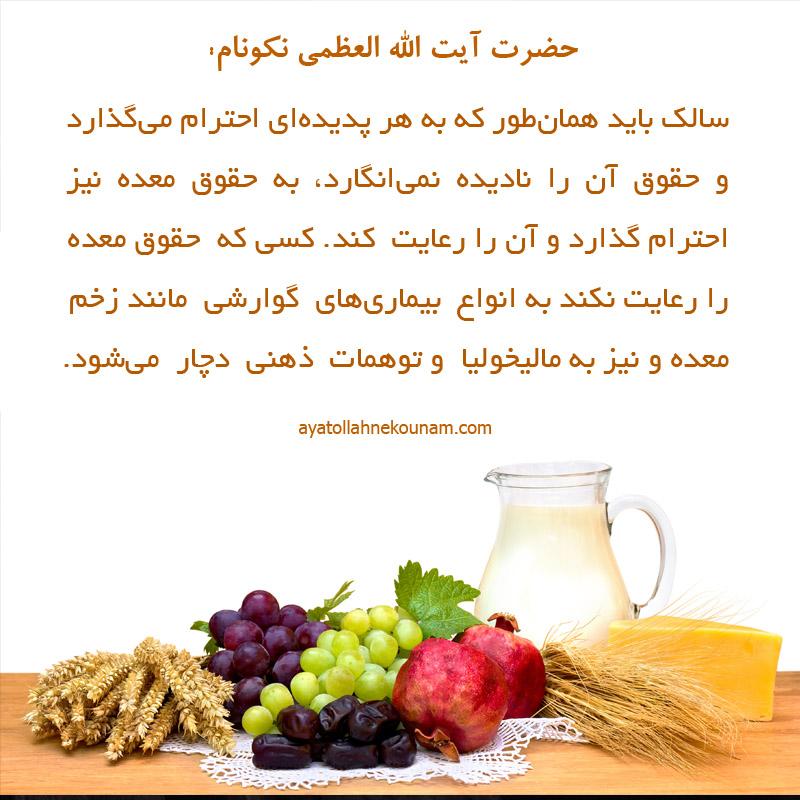 برنامهٔ غذایی سالک